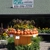 Laurel Oak Garden Center