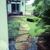 Green Landscapes Kauai LLC