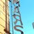 Mars Bar & Restaurant
