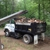 Filli's Tree Service & Land Clearing