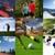 Sport & Fitness Transformations