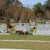 Osceola Memory Gardens Cemetery Funeral Homes & Crematory