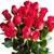 Apple Valley Florist