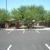 Primrose School at Palm Valley