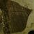 Tarrillions Wood & Mulch