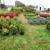 Paul Kellogg's Garden Center & Landscaping