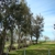 Willows Mobile Home & RV Park