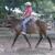 Dark Horse Farms