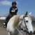 Good Horse LLC