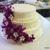 Crazy Cake Baker