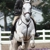 Trails End Equestrian Center