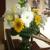 Flowers at Westcott Barn