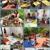 Fun Family Daycare