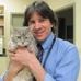 Animal Ark Veterinary Hospital