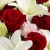 Flowers Galore, Veils & More