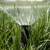Aqua Pro Lawn Sprinkler Systems Inc