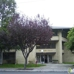 Hayward Villa