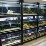 The Planted Aquarium Store Inc