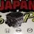 All Japanese Auto Parts, Llc.