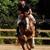 Rolling Hills Farm Equestrian Center