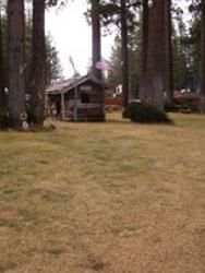 Pine Cone Acre Motel