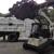Georgetown Tree Services llc