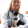 Madison Park Veterinary Hospital
