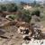 Schreiner Drilling & Excavating