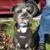 Doggy Lama Pet Care