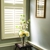 Totally Blinds~Window Design