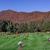 Garrett-Hillcrest Cemetery