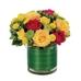 Nacogdoches Floral Company