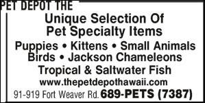 Pet Depot The