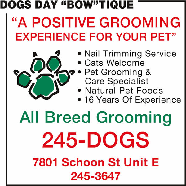Dogs Day 'Bow'tique