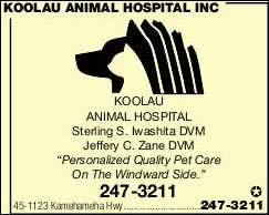 Koolau Animal Hospital Inc