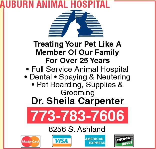 Auburn Animal Hospital