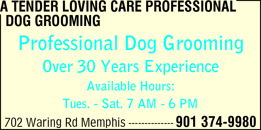 A Tender Loving Care Professional Dog Grooming