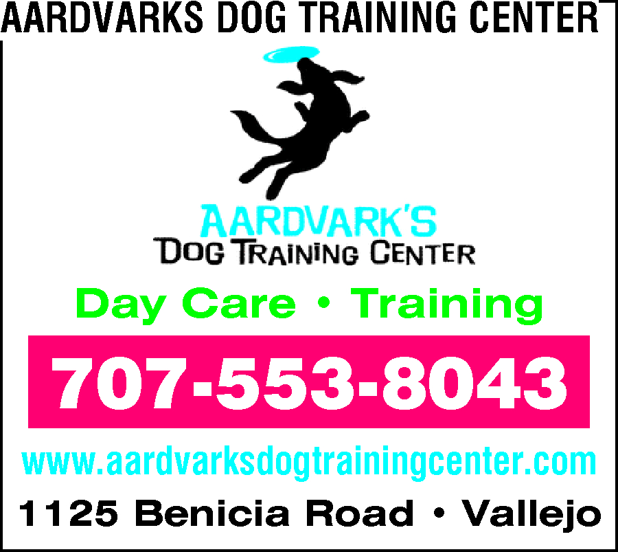 Aardvarks Dog Training Center