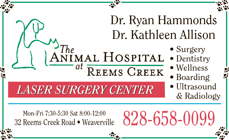 Animal Hospital at Reems Creek