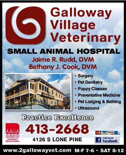 Galloway Village Veterinary