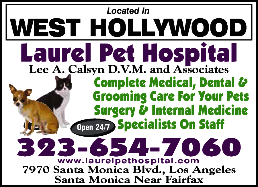 Laurel Pet Hospital