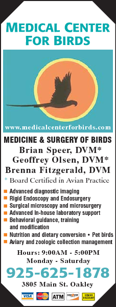 Medical Center For Birds