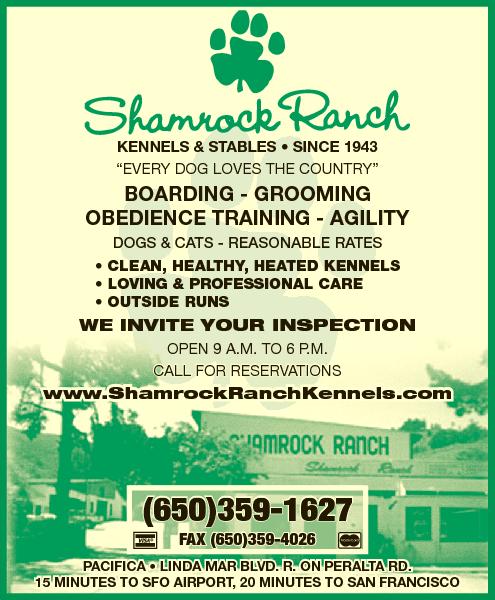 Shamrock Ranch Boarding & Training