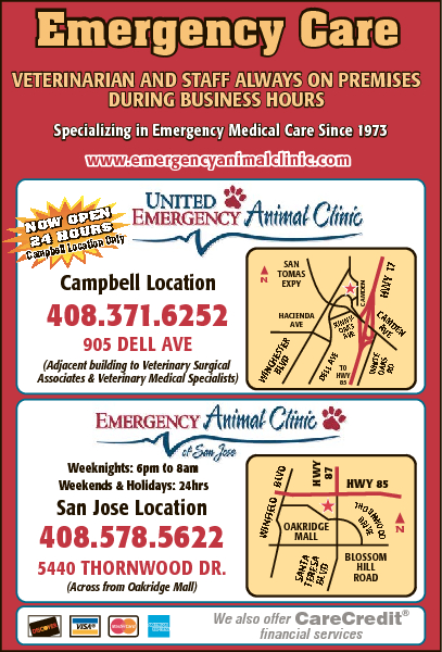United Veterinary Speciality and Emergency