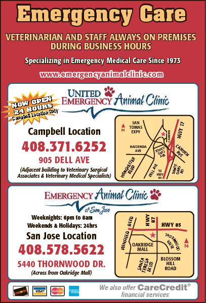 United Emergency Animal Hospital