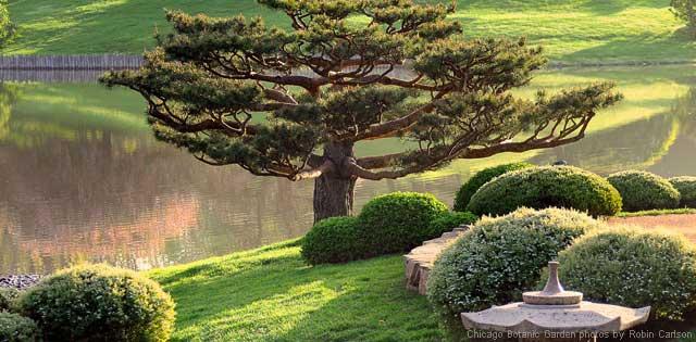Malott Japanese Gardens
