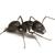 Heritage Termite & Pest Services Inc
