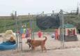 Margarita's Pet Resort & Spa - Beaver Dam, WI