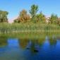 Floyd Lamb State Park - Las Vegas, NV