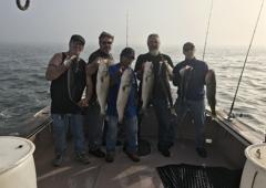 Boston Fish Tales   Boston Harbor Fishing Charter   Sports Fishing Charters